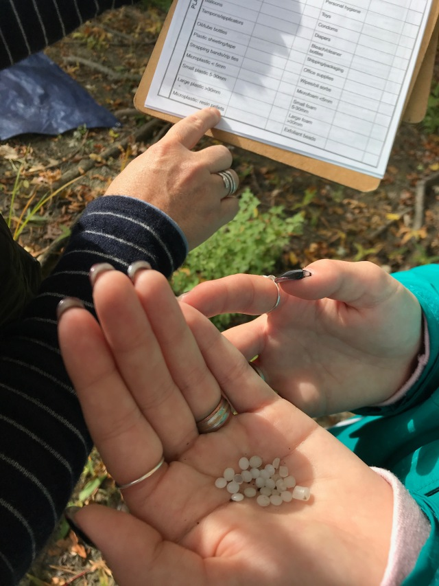 Resin pellets in a hand